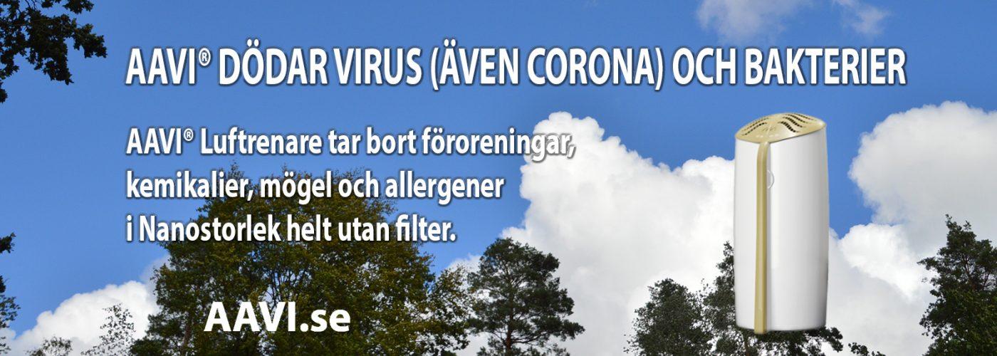 friska001
